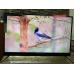 Телевизор BBK 50LEX8161UTS2C 4K Ultra HD на Android, 2 пульта, HDR, премиальная аудио система в Оленевке фото 9